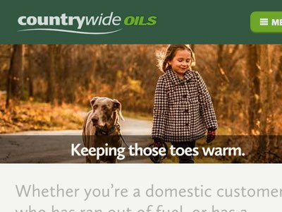 A snippet of the Countrywide website